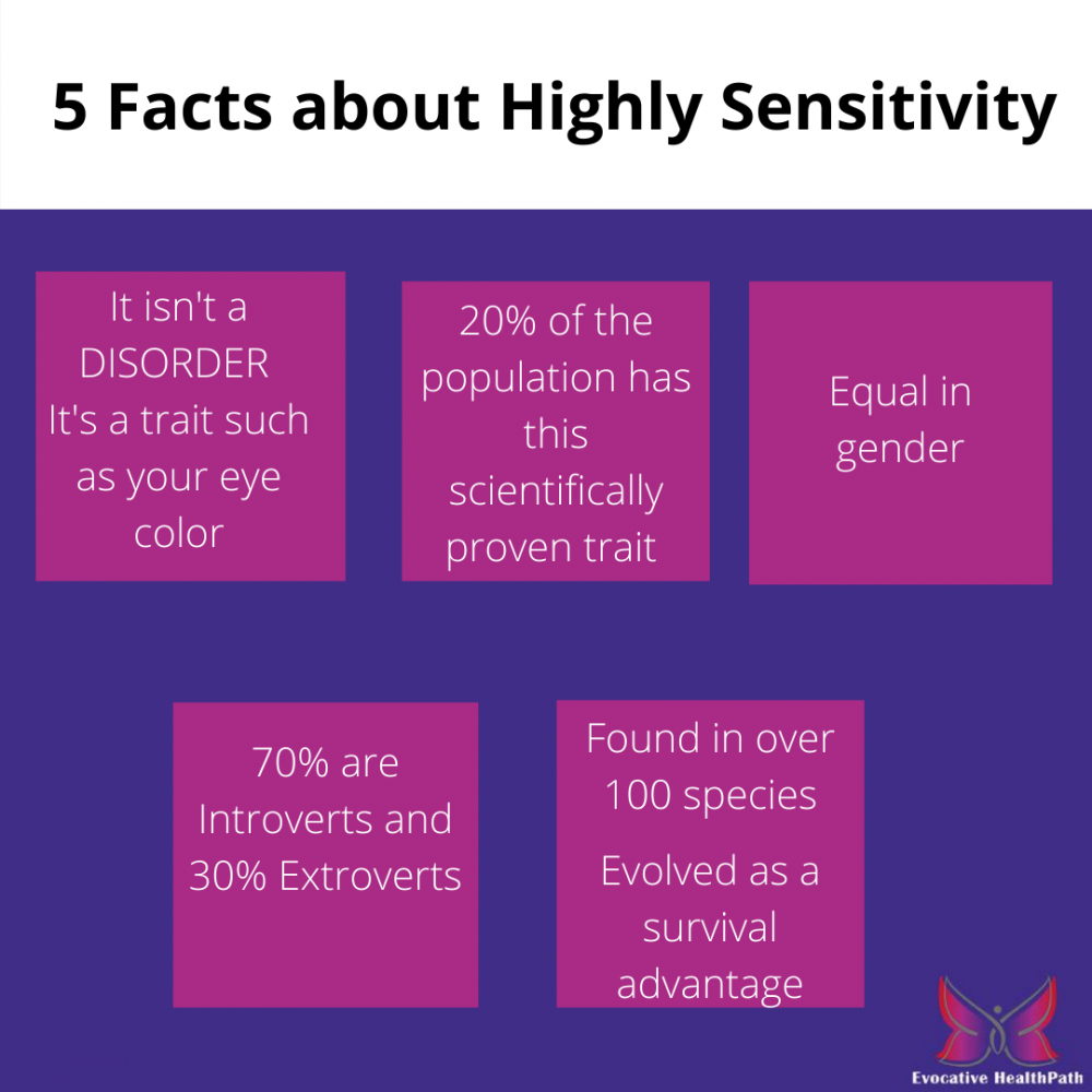 Highly Sensitive Persons